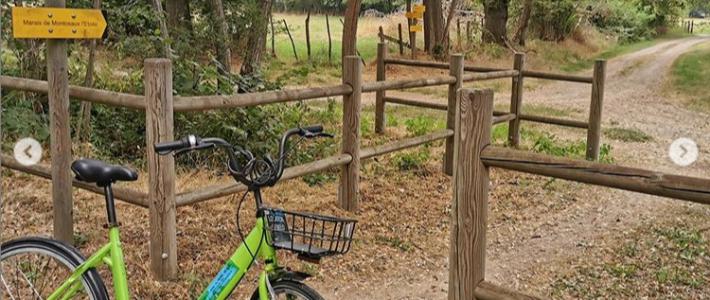 Balade contée cycliste entre Saint-Yan et le Marais de Montceau l'Etoile